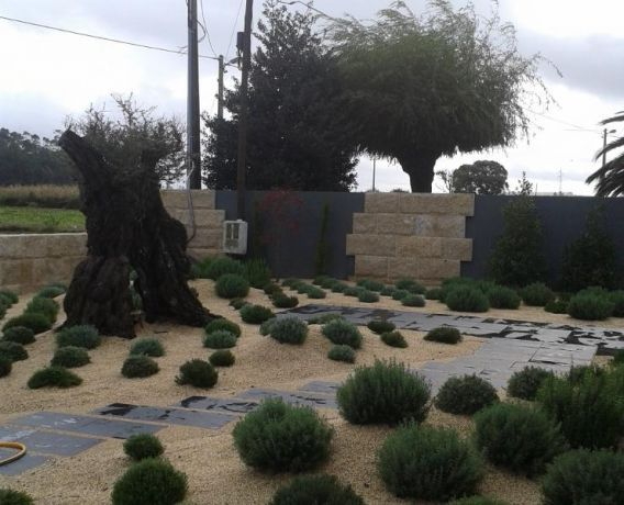 Foto 3 de Projeto de Raiz - Jardins