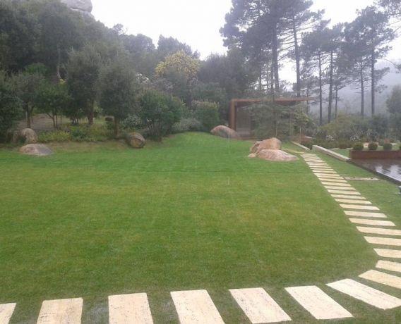 Foto 2 de Projeto de Raiz - Jardins