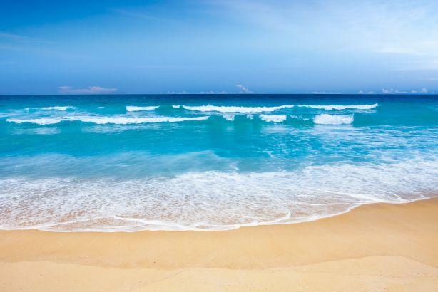 Foto 2 de Sun Algarve Transfers