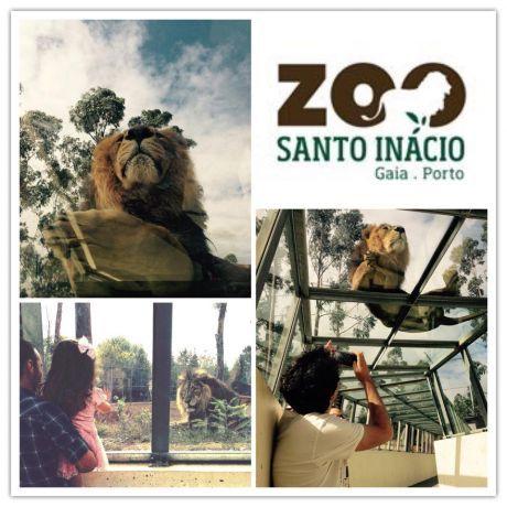 Foto 2 de Zoo Santo Inácio