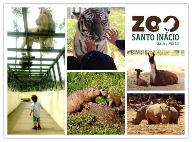 Foto 1 de Zoo Santo Inácio