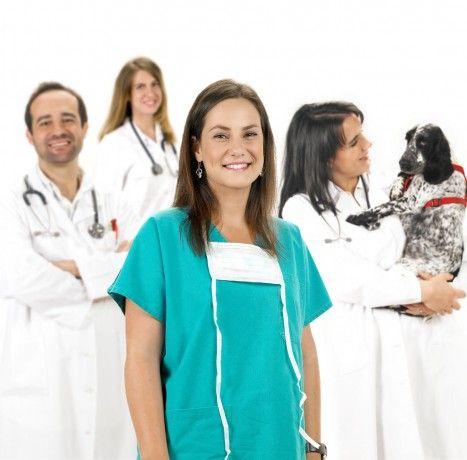 Foto 2 de House Vet - Clínica Veterinária de Paço de Arcos