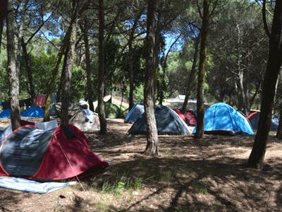 Foto 3 de Lisboa Camping, Ar Puro Campings