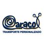 Logo Caracol - Transporte Personalizado