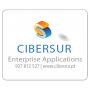 Logo Cibersur - Pesquisa e Desenvolvimento de Sistemas