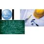 Logo Laplace de Bolzano - Explicações